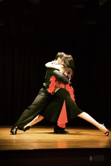 Barcelona Tango Design (1)